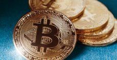 bitcoin bet
